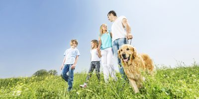 Low angle view of a happy family walking with their dog.   [url=http://www.istockphoto.com/search/lightbox/9786797][img]http://dl.dropbox.com/u/40117171/people-animals.jpg[/img][/ url]  [url=http://www.istockphoto.com/search/lightbox/9786778][img]http://dl.dropbox.com/u/40117171/family.jpg[/img][/url]