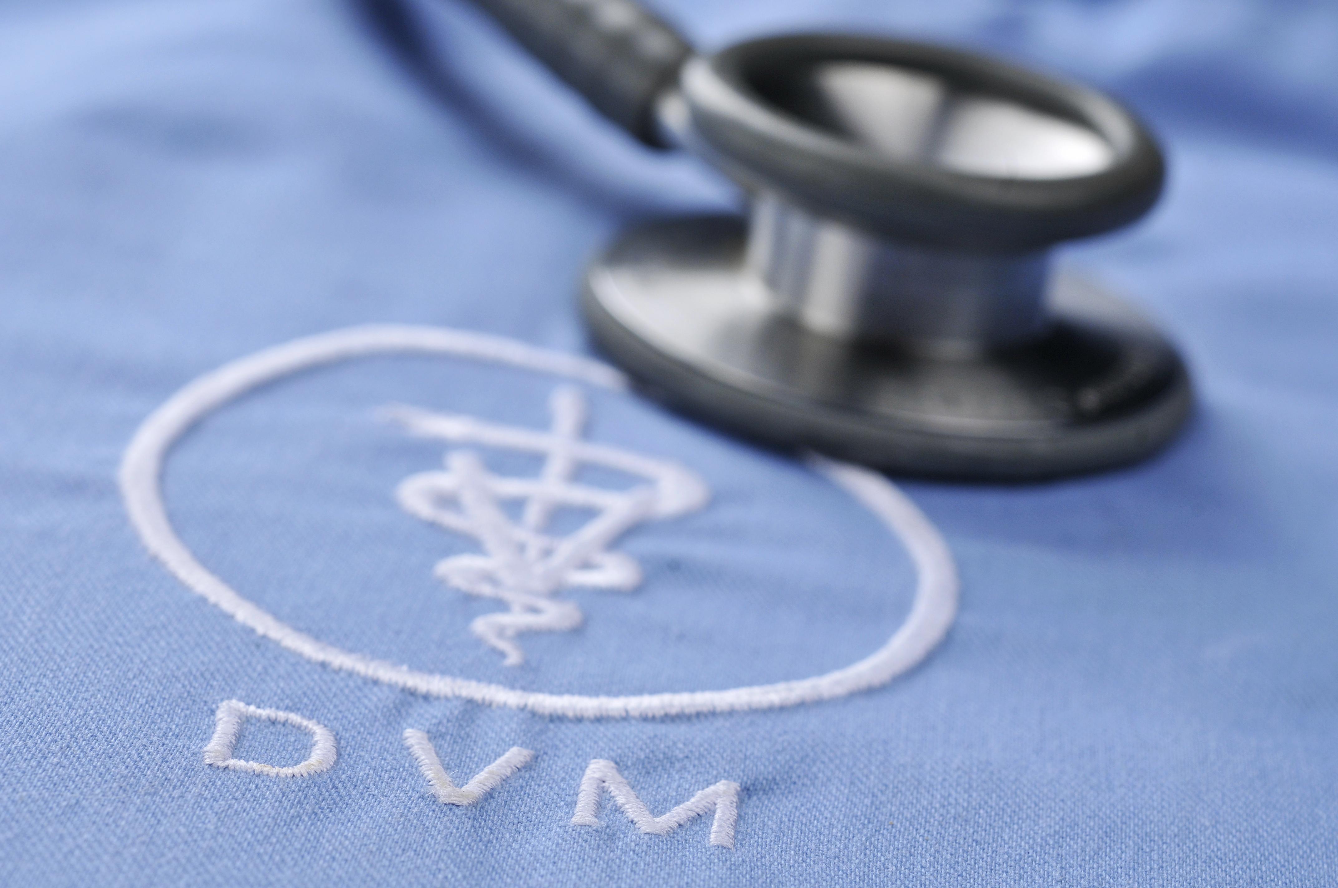 Other Careers in Veterinary Medicine